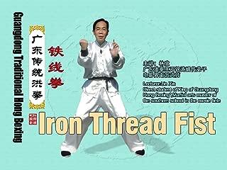 Guangdong Traditional Hong Boxing - Iron Thread Fist