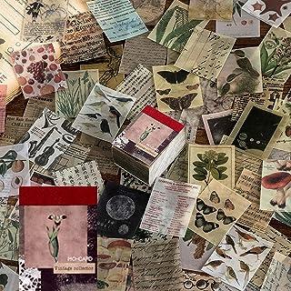 Lot de 366 feuilles de papier parchemin vintage pour scrapbooking, loisirs créatifs, création de cartes, journal, fournitu...