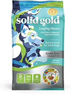 Solid Gold - Leaping Waters with Cold Water Salmon - Grain-Free Dog Food for Sensitive Stomach - Holistic Adult Dog Food