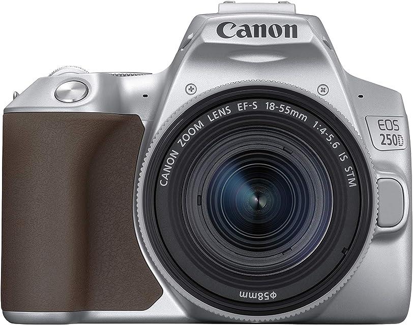 Canon EOS 250D - Cámara digital (241 MP 6000 x 4000 Pixeles CMOS 4K Ultra HD pantalla táctil) plata - kit con cuerpo y EF-S 18-55IS STM