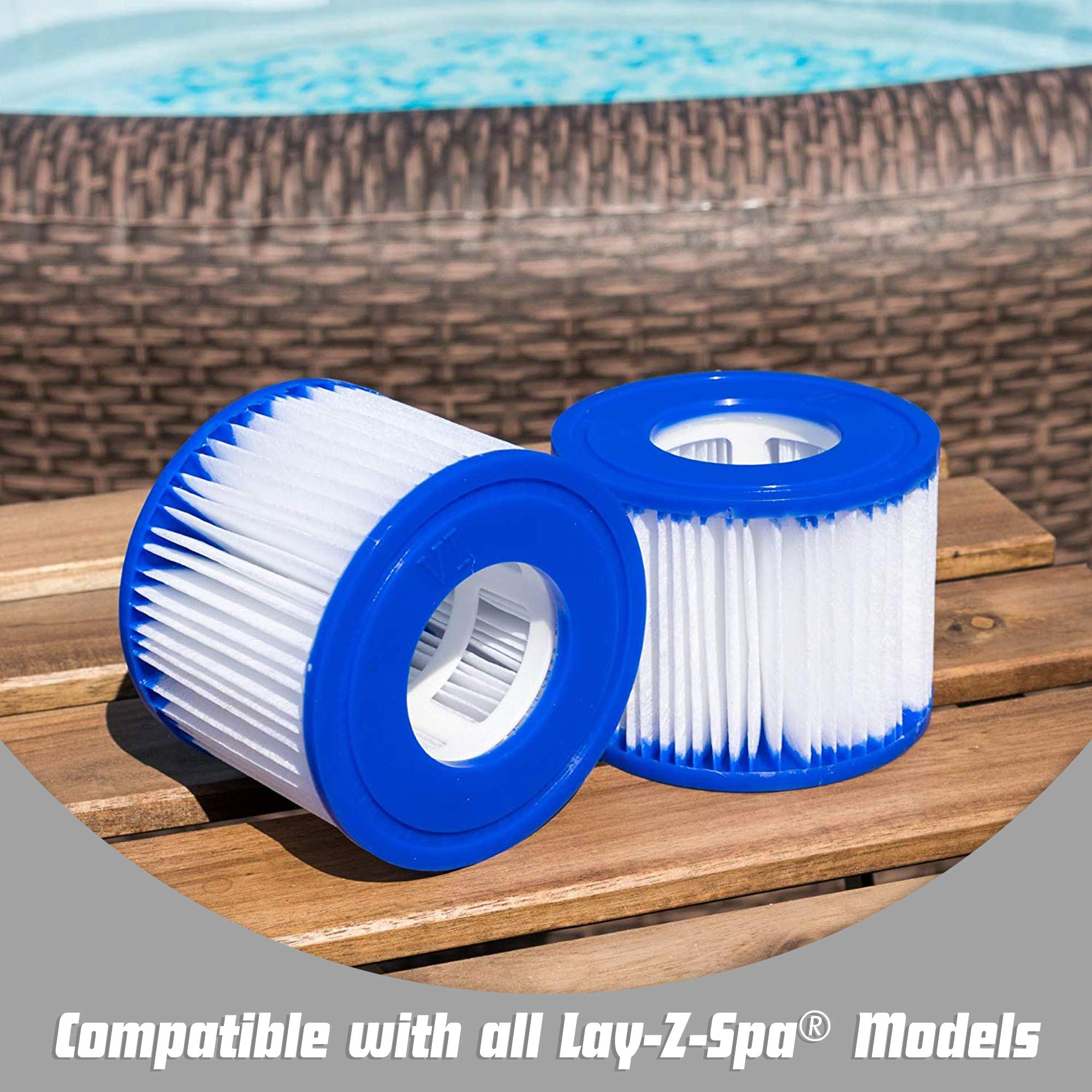 Bestway 58323 - Cartuchos de filtro de repuesto para Lay-Z-Spa ...