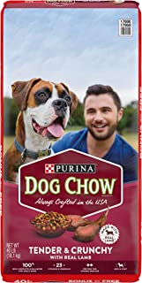 Purina Dog Chow Tender & Crunchy with Real Lamb Adult Dry Dog Food