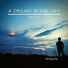 A Dream in the Sky (Vino Vino)