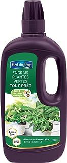 Fertiligène Fertilizzante Piante Verdi Tutto Pronto, 1L