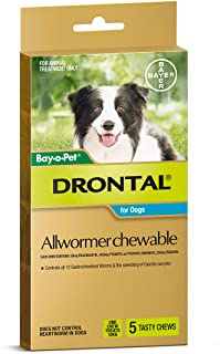 Drontal Allwormer Chews for Dogs 3-10kg, 5 Pack