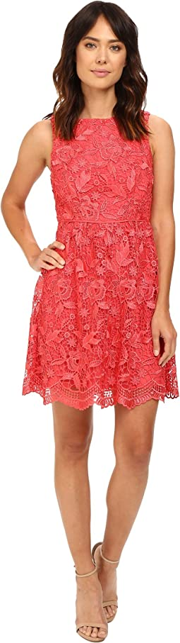 Fit & Flare Venice Lace Dress