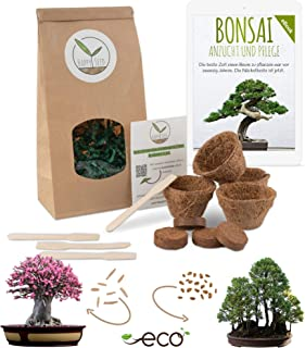 Bonsai Starter Kit Anzuchtset inkl. GRATIS eBook - Pflanzset aus Kokostöpfen, Samen & Erde - nachhaltige Geschenkidee für Pflanzenfreunde Würstenrose  Berg Mammutbaum