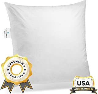 Amazoncom 20 X 20 Pillow Inserts Decorative Pillows Inserts