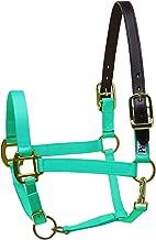 Perri's Premium Nylon Safety Halter N B Turquoise Safety Halter