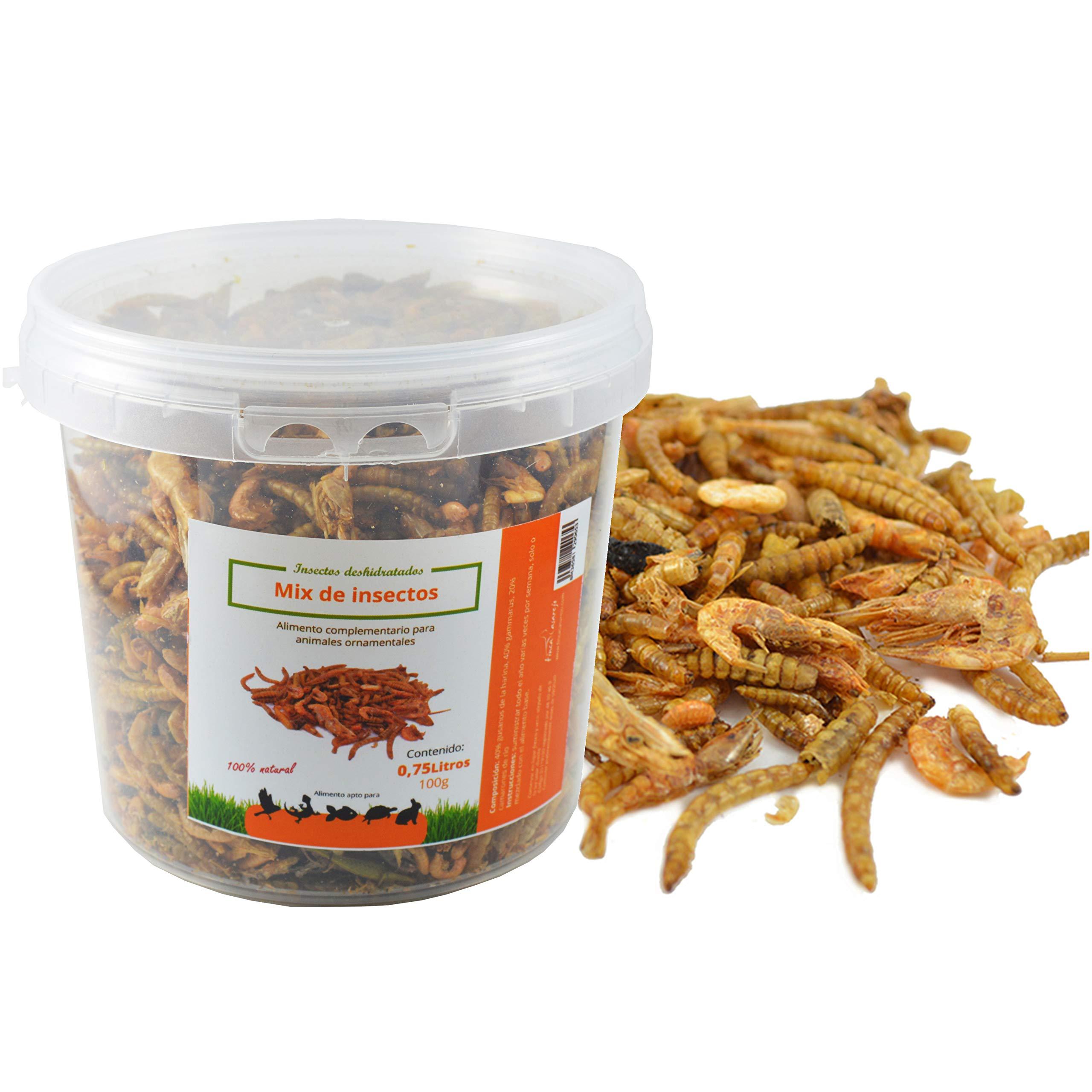 FINCA CASAREJO Mix de Insectos Secos. Alimento deshidratado para ...