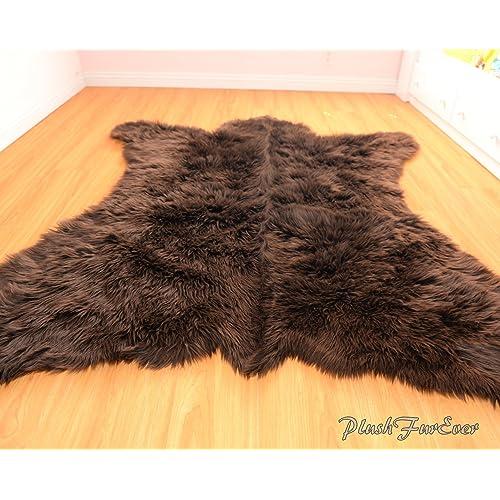 Real Bear Skin Rug Amazon Com