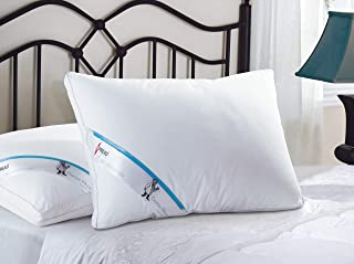Spread Spain Dr. Pillows for Sleeping, Cervical Pillow for Neck Pain,Orthopedic Pillow Support for Back,Side Sleepers, Ant...