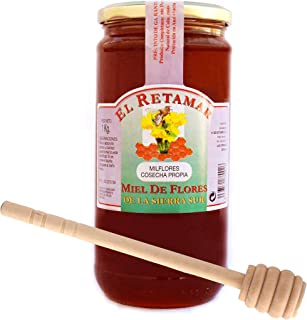Miel de Abeja 100% Natural Hecha en España + Dispensador de