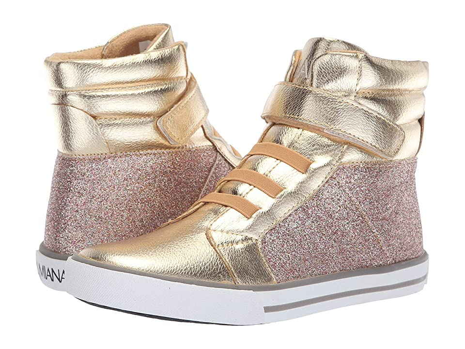 Amiana 15-A5537 (Toddler/Little Kid/Big Kid/Adult) (Gold/Gold Multi Glitter) Girl