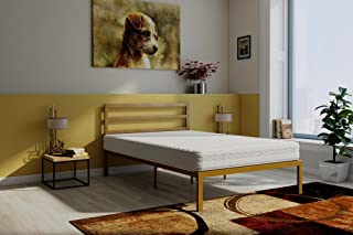 Signature Sleep Contour 8-Inch Reversible Independently Encased Coil Mattress & Premium Modern Platform Full Gold Bed with Headboard Set