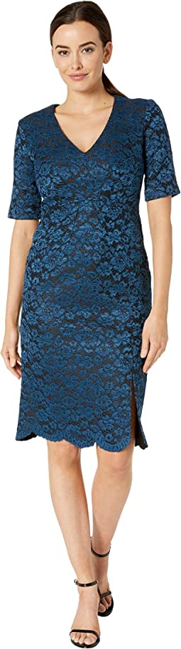 Women\'s Taylor Dresses | Clothing | 6pm