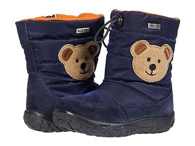 Naturino Falcotto Poznurr Bear AW20 (Toddler) (Blue) Boy