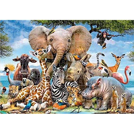 Space Traveler Intellective Educational Fun Toy Game for Childen,Landscape Pattern Paper Puzzle DIY Home Decor Jigsaw Puzzles for Adults,Kids 1000 Pieces