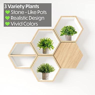 3 Piece Small Artificial Plants Pots for Home Decor Fake Faux Feaux Decorative Plant Decoration Arrangements Mini Artificial