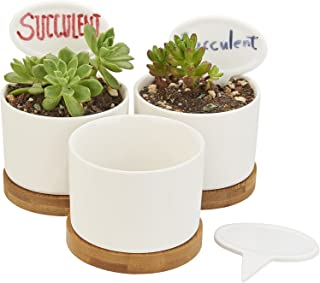 Planter Pots Indoor, Flowerplus 3 Pack 3.1 Inch White Ceramic Small Round Succulent Cactus Flower Plant Pot with Bamboo Tray and Little Plants Signs for Indoors Outdoor Home Garden Kitchen Decor