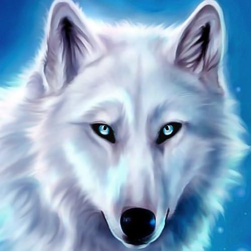 Wild Wolf Sim 3D