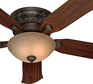 Hunter Fan 52-Inch Low Profile Roman Bronze Finish Ceiling Fan with Tea Stain Glass Light Kit (Renewed)