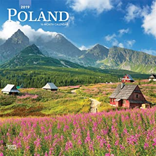 Poland 2019 12 x 12 Inch Monthly Square Wall Calendar, Scenic Travel Europe Warsaw Polish (Multilingual Edition)