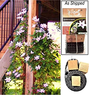 Scroll Trellis Garden Trellis for Narrow Spaces, Fence Posts, Customizable for Wall and Larger Spaces, Each Plant Support is 108 inches x 4 inches x 2 inches