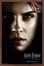 """Trends International Harry Potter and The Deathly Hallows: Part 1 - Hermione One Sheet Wall Poster, 22.375"""" x 34"""", Mahogan..."""