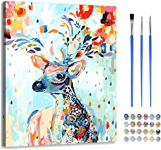 Paint by Number with Frame-DIY Digital Canvas Oil Painting Adults Kids Gift Kits with Wooden Frame Pre-Printed Canvas Art ...