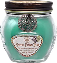 Way Out West Candles Scented with Native Pinon Pine/Pinyon - Large 17 oz Jar Candle -Long Lasting, Soy Wax Blend - A Favorite Gift for Nature Lovers - Made in USA