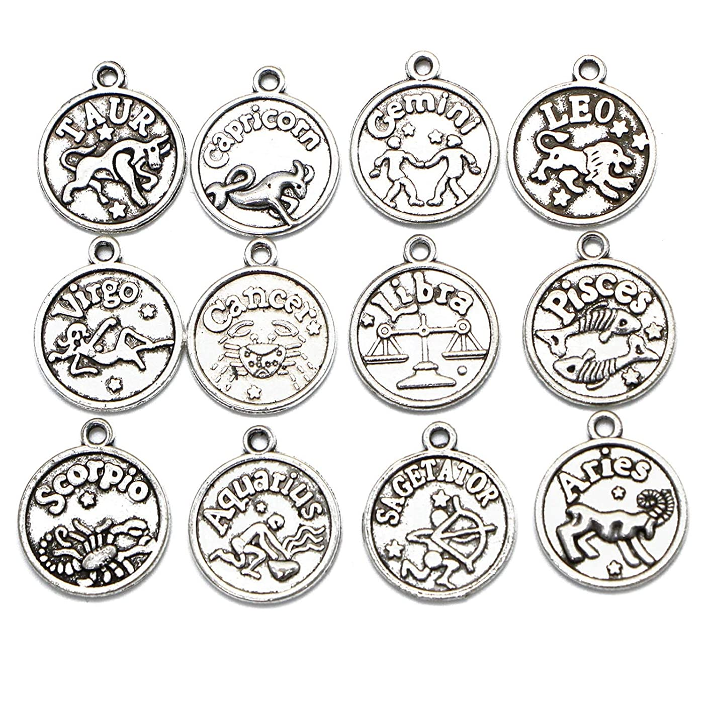 Monrocco 48Pcs Antique Silver 12 Constellation Charms Pendants for Jewelry Making and Crafting