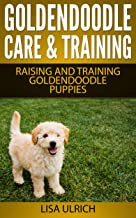 Goldendoodle Care & Training: The Complete Guide On Raising, Training, Caring For Goldendoodle Puppies