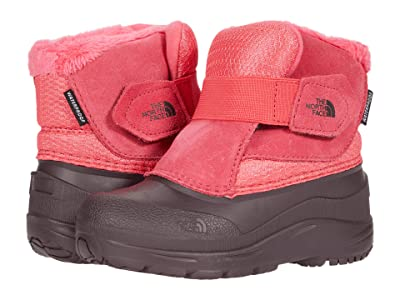 The North Face Kids Alpenglow II (Toddler) (Paradise Pink/Root Brown) Kids Shoes