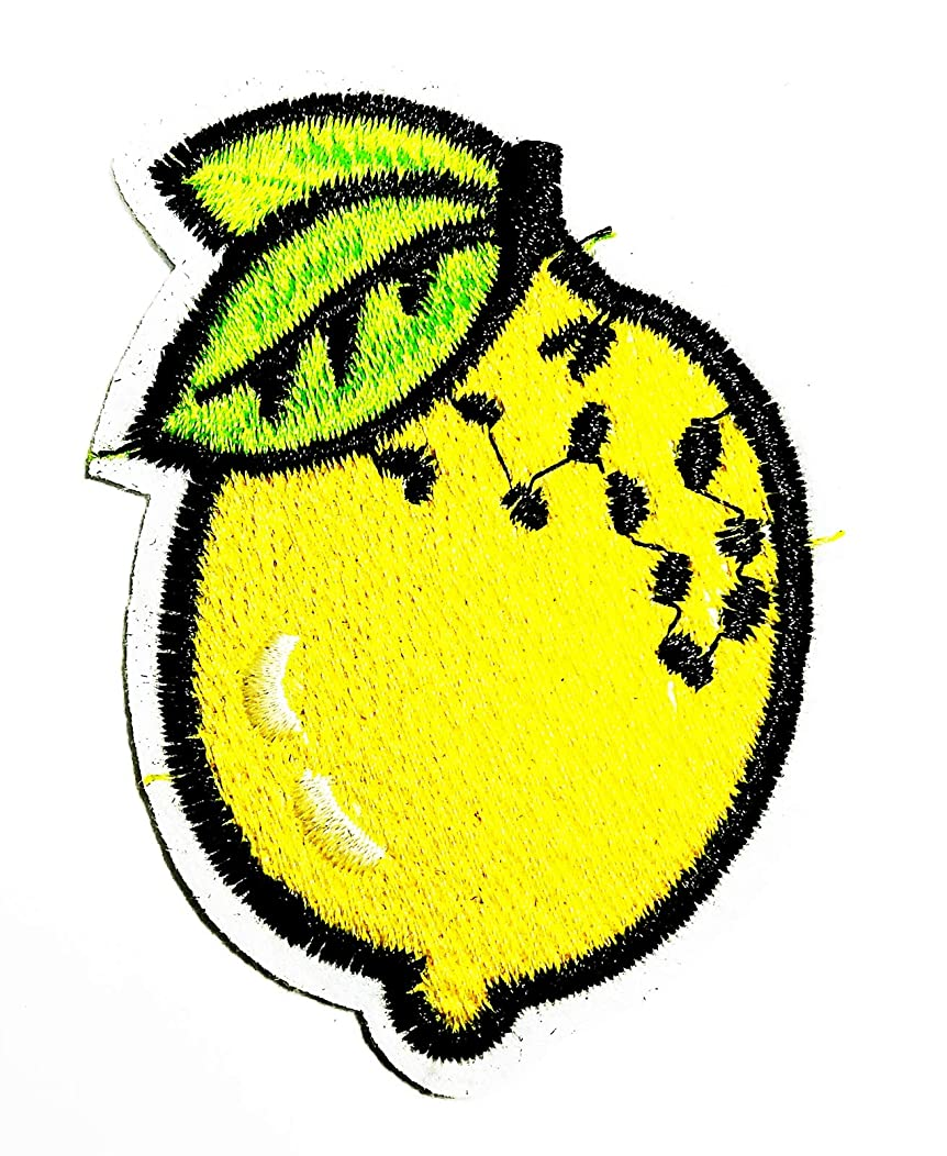 Lemon Yellow Healthy Vegetables Fruit Good 2.25X3 in MEGADEE Patch Cartoon Kids Symbol DIY Iron on Patch Iron-On Designer Patch Used for Gifts Crafts Jeans Clothing Fabric