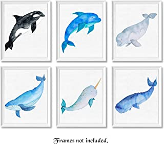 Ocean Whales Art Poster Prints, Set of 6 (8x10 Unframed Pictures, Great Wall Art Decor Gifts Under 20 for Home, Office, Nursery, Studio, Beach House, Shop, Student, Teacher, Earth & Animals Fan