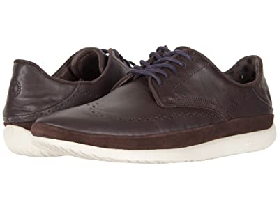 UGG Cali Wing-Toe Derby (Stout Leather) Men