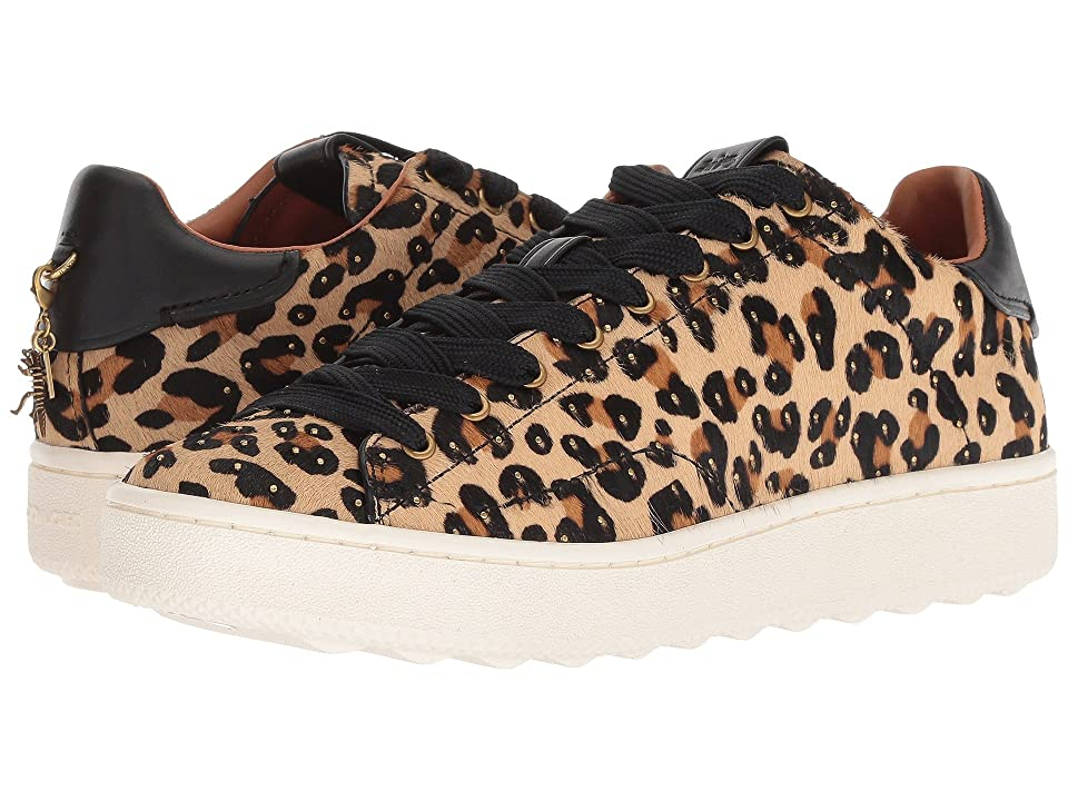 COACH C101 Low Top Sneaker in Embellishment Leopard (Natural/Black) Women