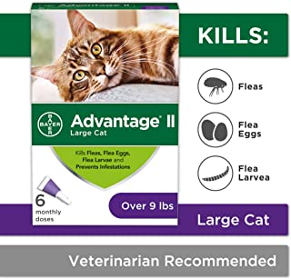 combined flea and wormer for cats