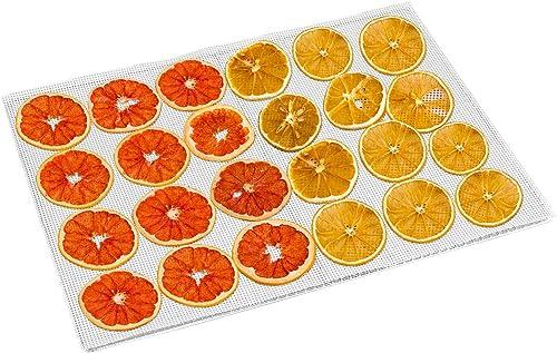 Kwasyo 10 Pièces Feuilles de Déshydrateur Carrées en Silicone Tapis de Déshydrateur Antiadhésifs pour Fruits Alimenta...