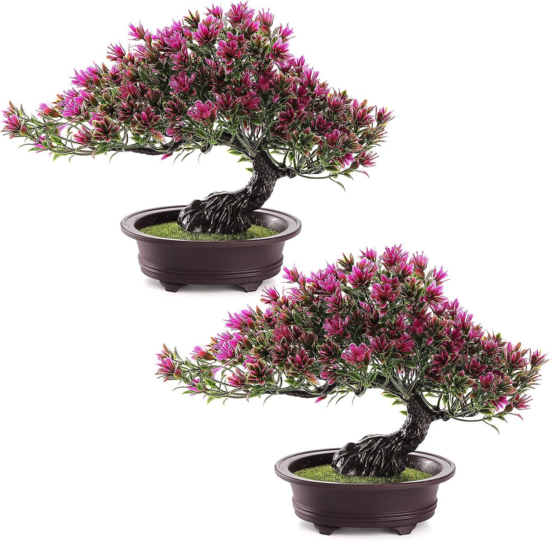 ZEAYEA 2 Pack Artificial Bonsai Tree, Height 9.5