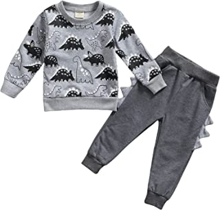 Little Baby Boys Outfits Toddlers Kids Cartoon Dinosaur...