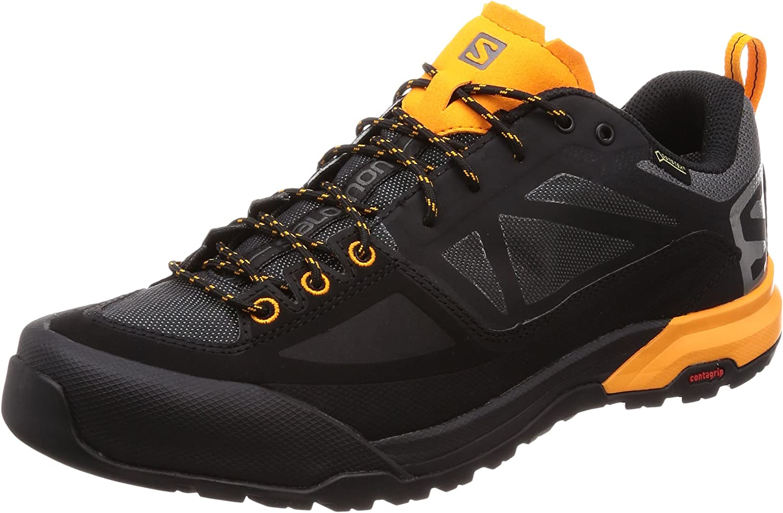 SALOMON Men's X Alp Spry GTX Low Rise Hiking Boots