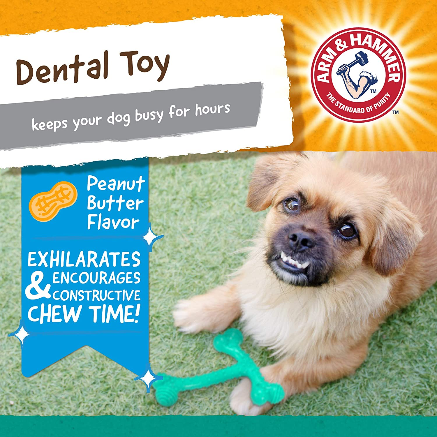 T-Bone Dental Chew Toy for Dogs and Super Treadz Gator /& Gorilla Chew Toy for Dogs