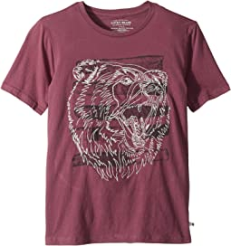 Bear Head Embroidered Short Sleeve T-Shirt (Big Kids)