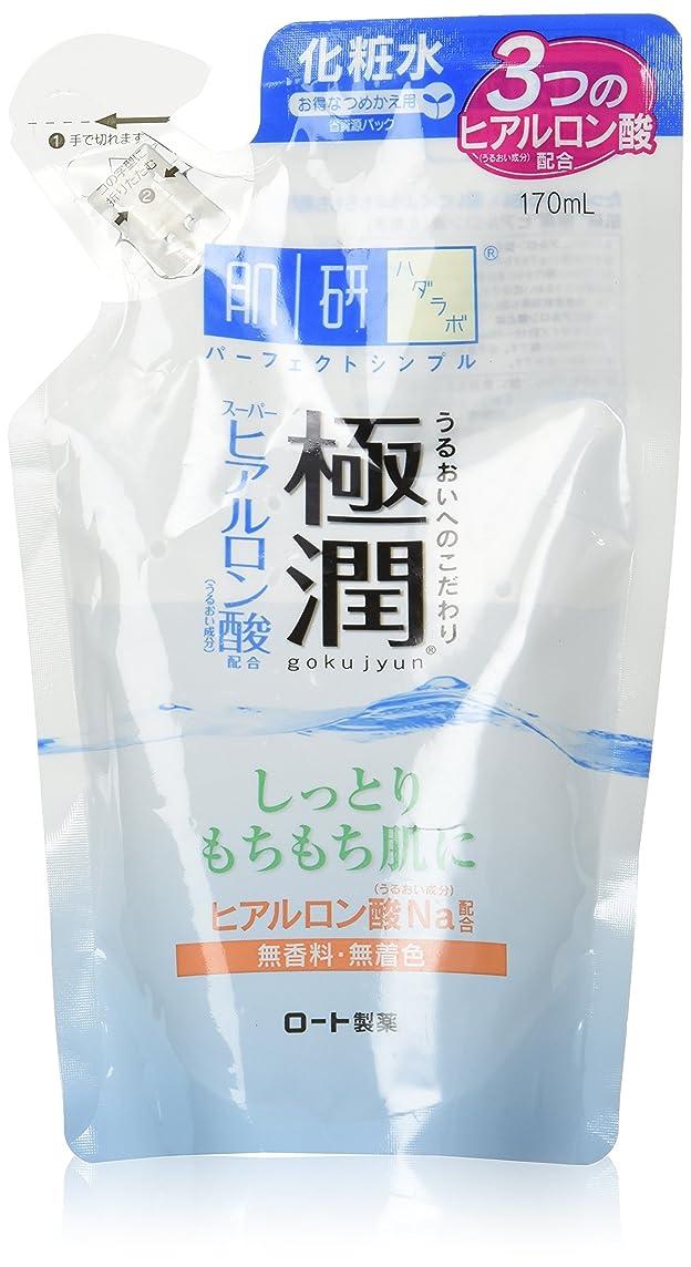 ティーム抵抗する付属品肌ラボ 極潤 ヒアルロン液 つめかえ用 170mL