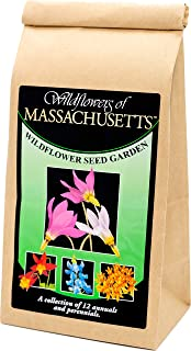 Massachusetts Wildflower Seed Mix - A Beautiful Collection of Twelve annuals and perennials - Enjoy The Natural Beauty of Massachusetts Flowers in Your own Home Garden