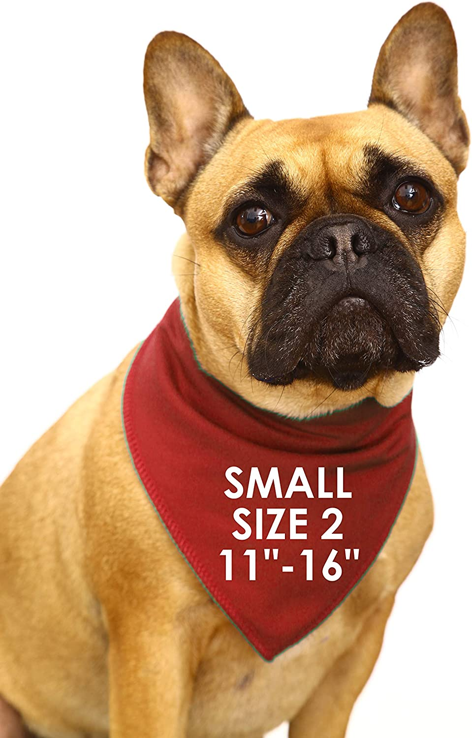 Small Dogs Shih-tzu Terriers /& Cockerpoo Dog Costume For Baby Showers /& Photo Reveal S2 Guard Dog Personalised With Baby Due Date Red Dog Bandana