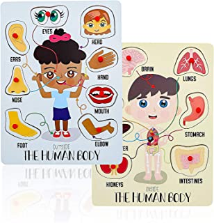 Best parts of the human body for kids pictures Reviews