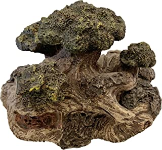 Top Brass Wild Tree Root Key Hider Figurine - Gnome Fairy Garden Statue with Secret Compartment - Indoor / Outdoor